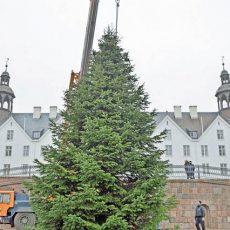 """""""Anleuchten"""" auf der Schlossterrasse am 25. November"""